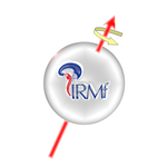 Centre IRM-INT - Accueil