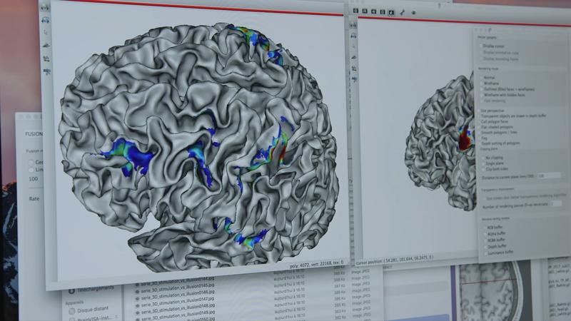 Formation & animation scientifique